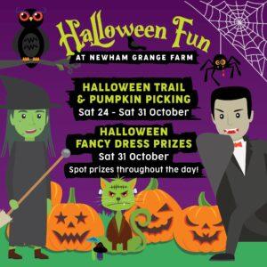 Halloween fun at Newham Grange Farm - Pumpkin Trail and Pumpkin picking