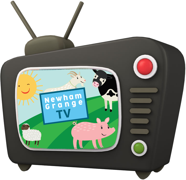 A cartoon of a television with Newham Grange TV on the screen